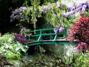 casa-y-jardines-de-monet-_7332288